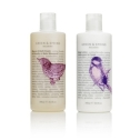 Green & Spring Relaxing Bath Foam and Body Lotion